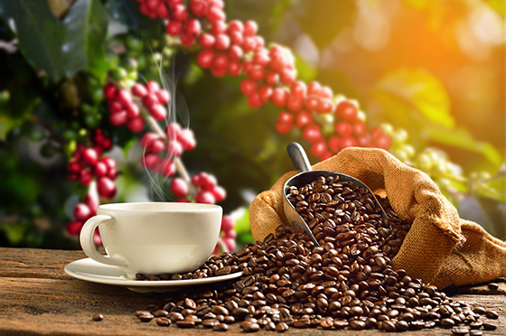 Coffee Beverage Manufactured Products Category